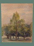 Watercolor Painting by Helga Wolfenstein of Trees at Theresienstadt